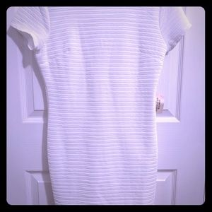 NWT Forever 21 White Fitted Dress